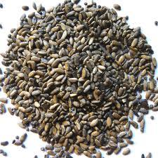 semillas-cardo-mariano