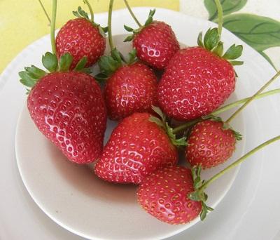 fresas-antioxidantes
