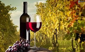 vino-beneficios-salud1